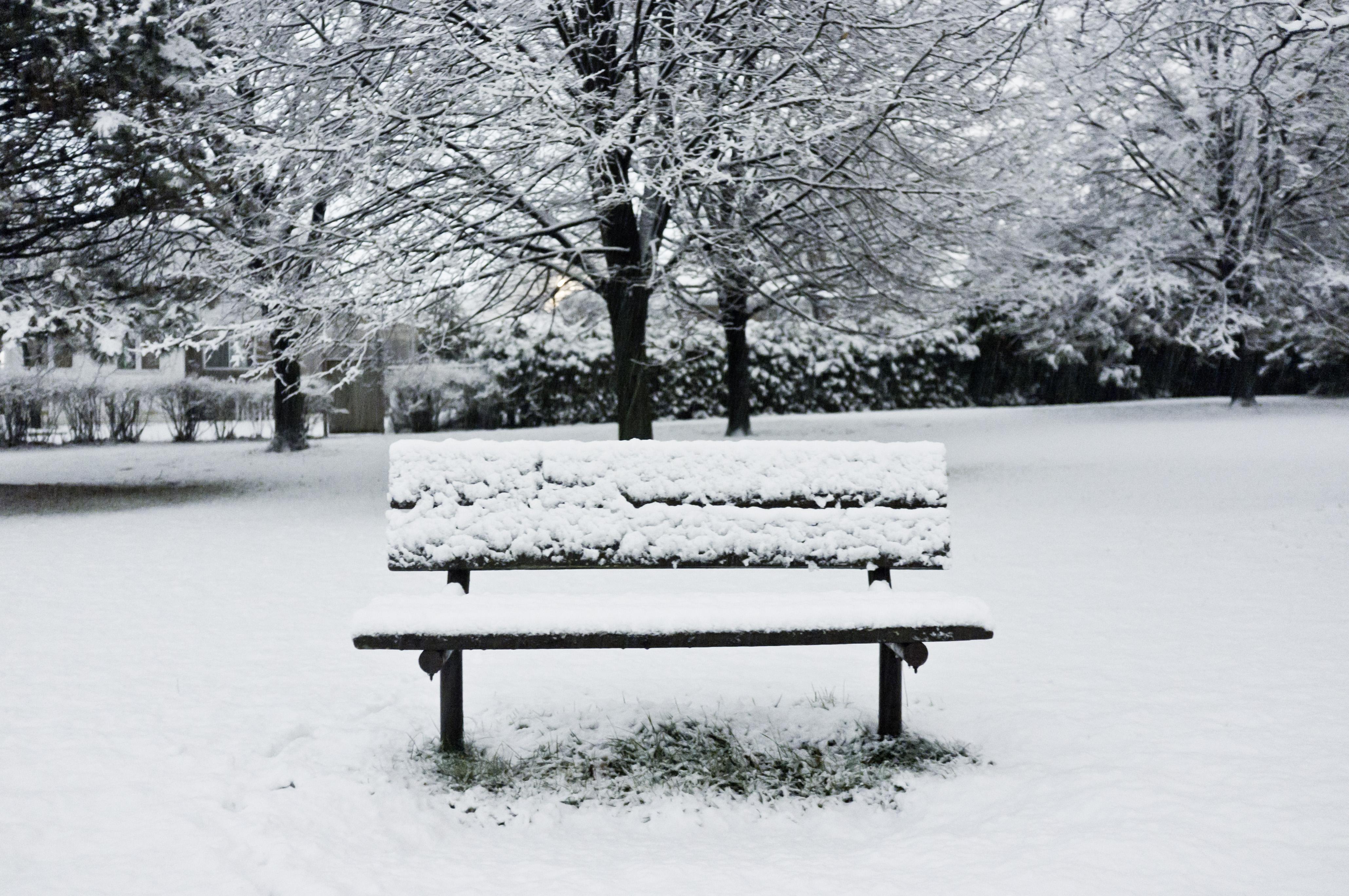 Ảnh mùa đông cô đơn