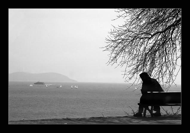 Hình ảnh cô đơn đẹp