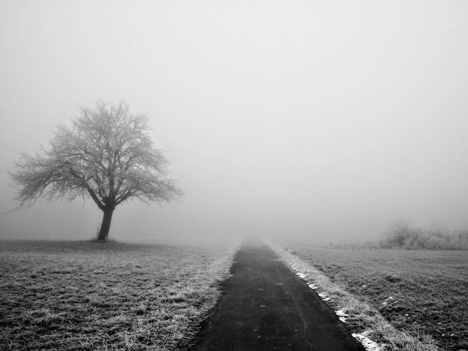 Hình ảnh thể hiện sự cô đơn