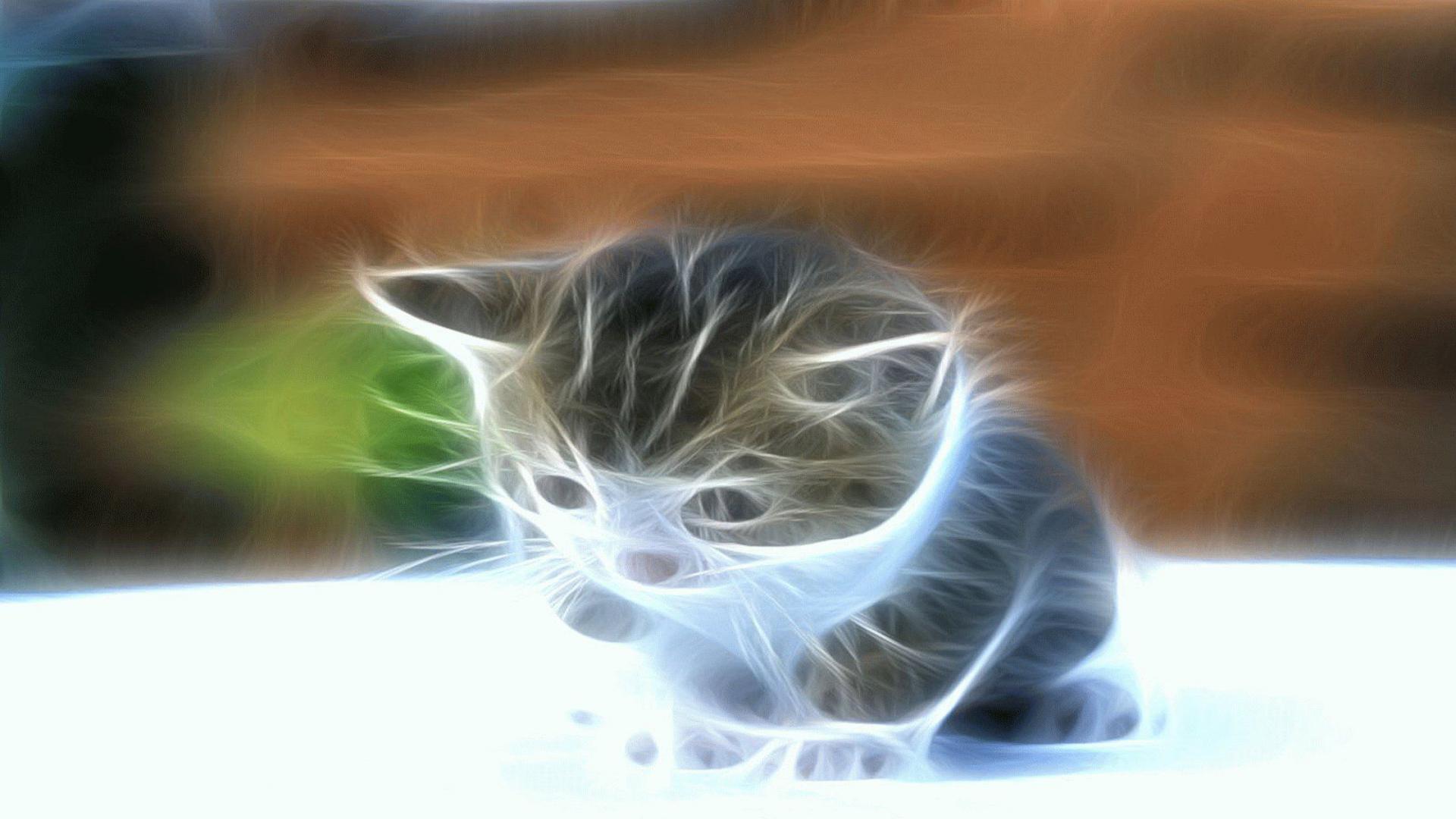 Hình nền mèo con 3D