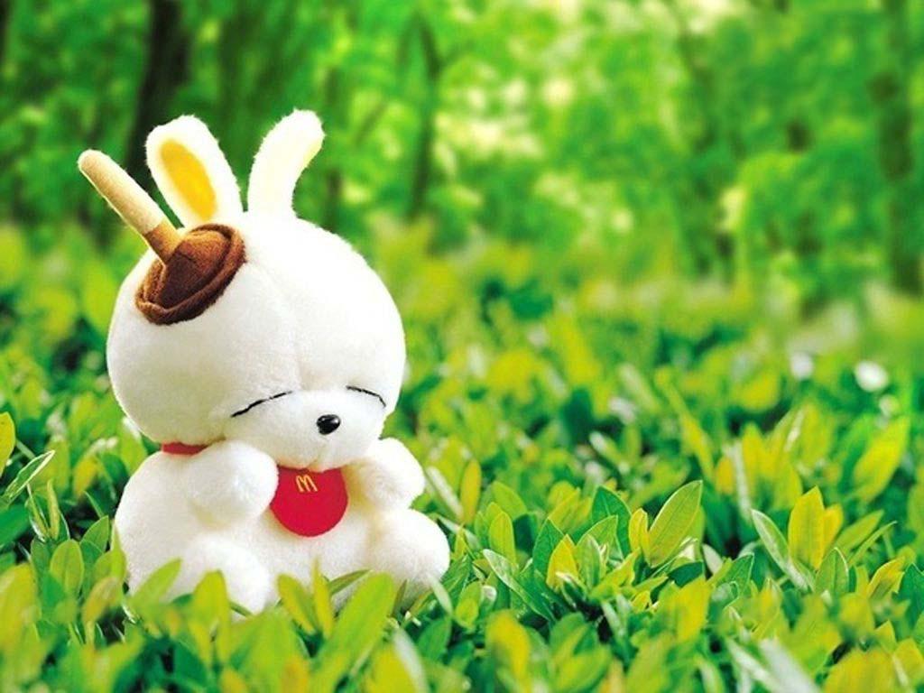 Hình ảnh chú thỏ dễ thương cho máy tính