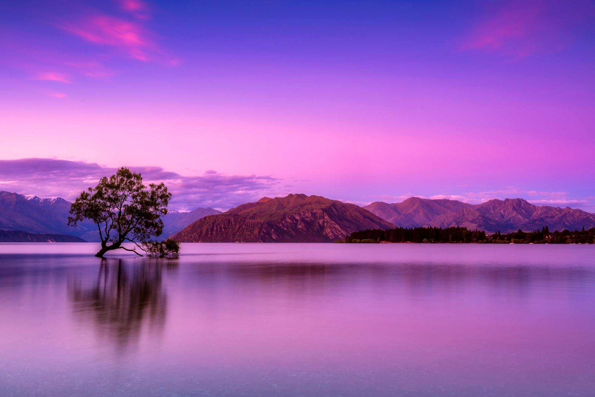 Hình nền phong cảnh tím mộng mơ