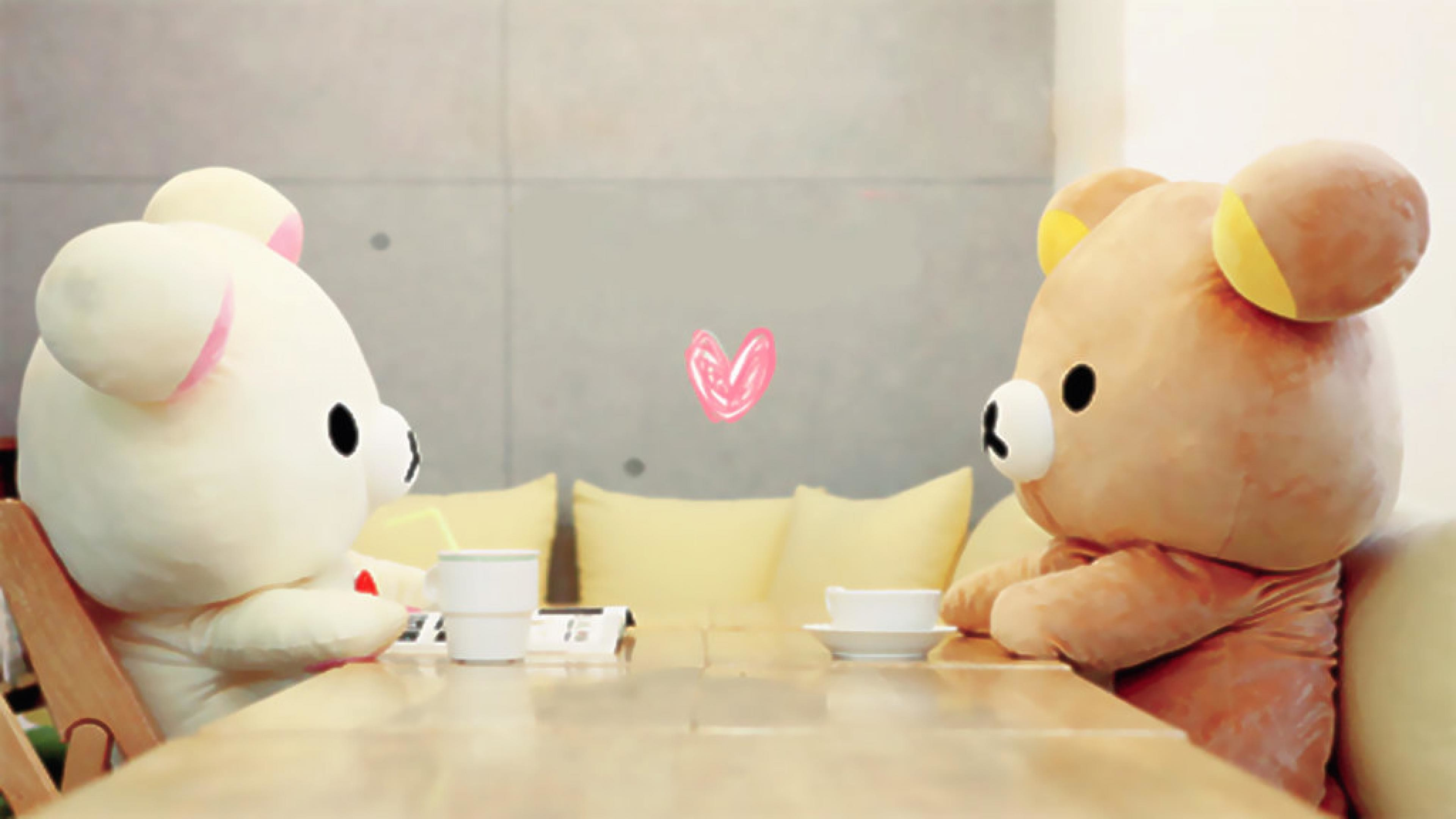 Hình nền hai chú gấu cute nhất