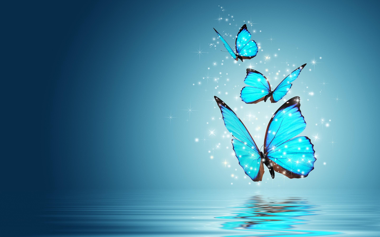Hình nền những chú bướm cute đẹp nhất