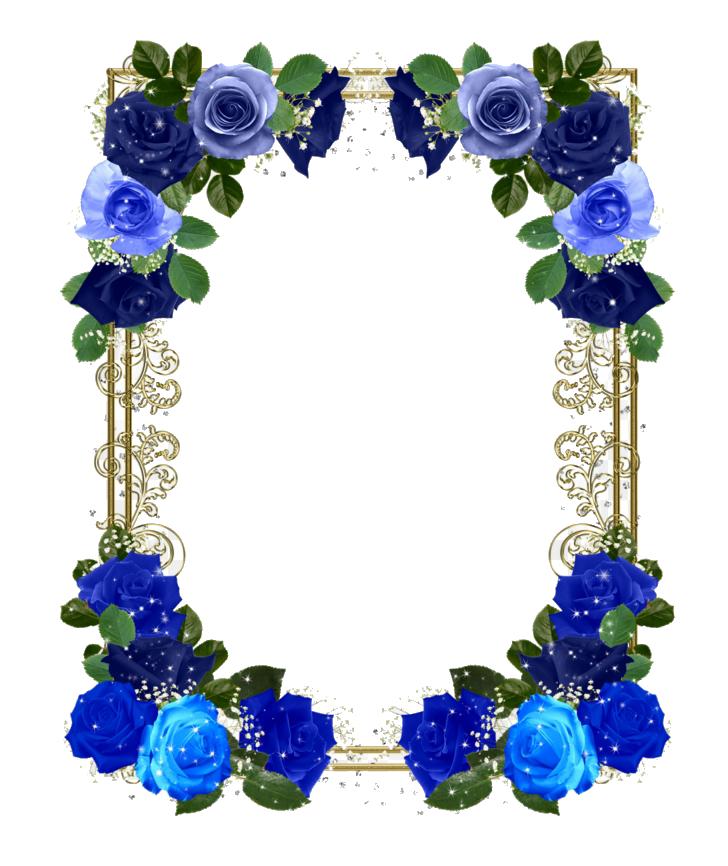 Khung hình hoa đẹp nhất