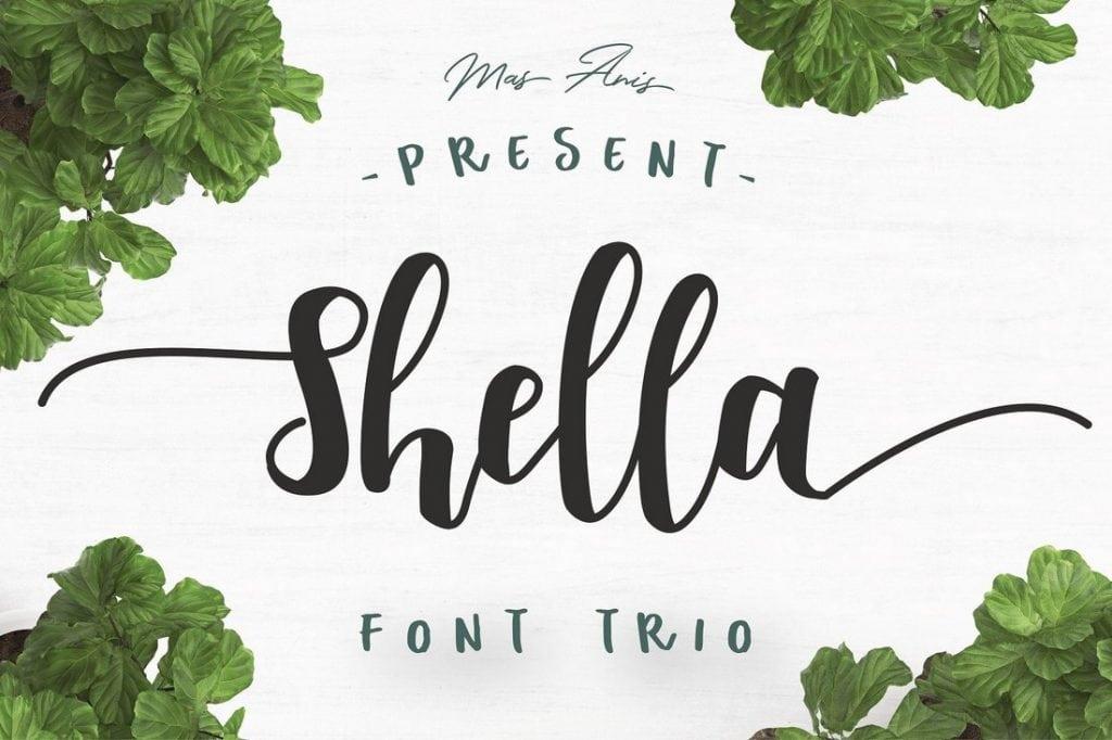 Shella-Font-Trio-1024x682