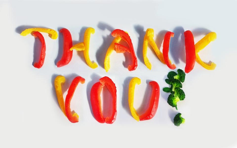 ThuThuatTinHoc - Slide cảm ơn đẹp (81)