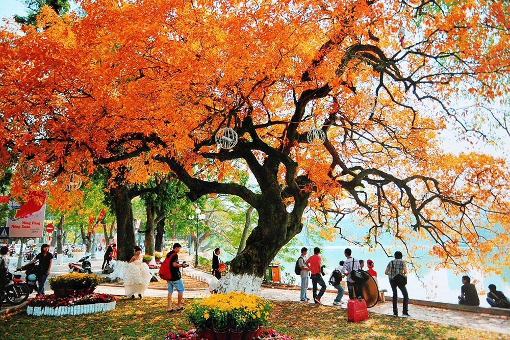 Hình ảnh đẹp về mùa thu Hà Nội