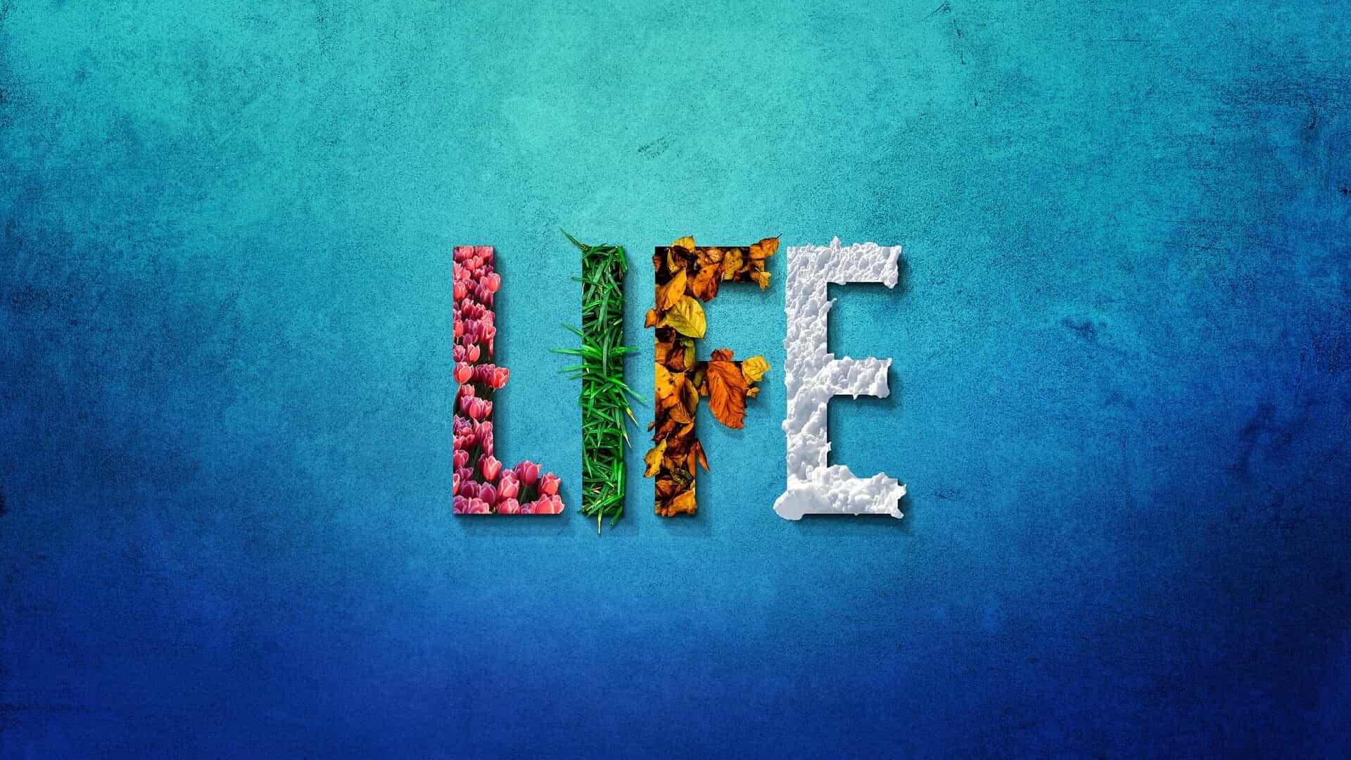 Hình nền máy tính cuộc sống tươi đẹp LIFE