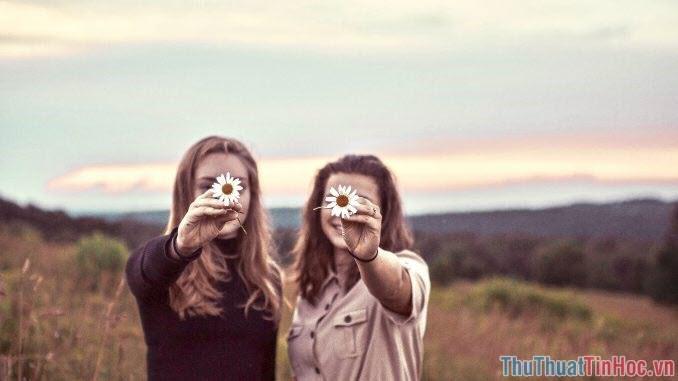 Những người bạn giống như những ngôi sao
