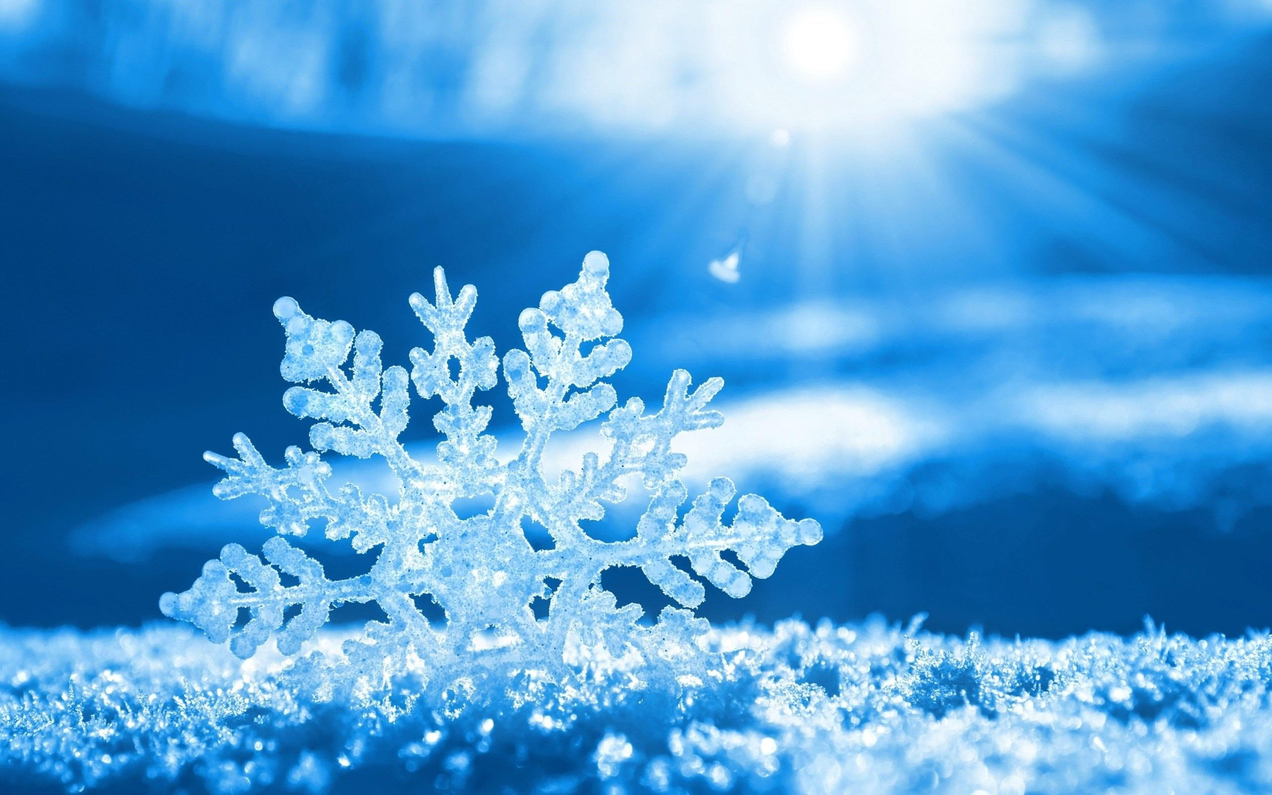Hình nền bông tuyết màu xanh