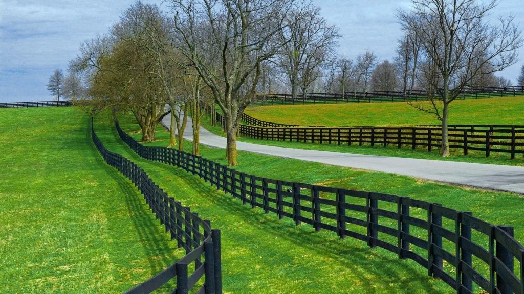 Hình ảnh con đường đồng quê đẹp