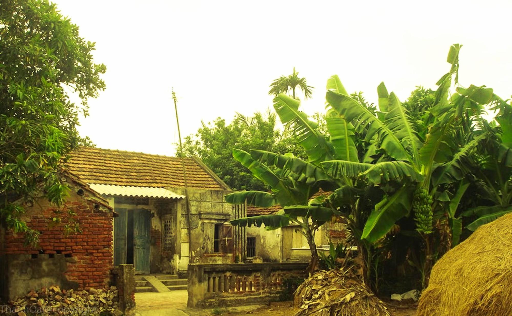 Hình ảnh quê hương mái ngói đơn sơ