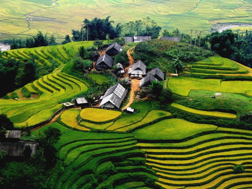 Hình ảnh quê hương vùng cao tươi đẹp
