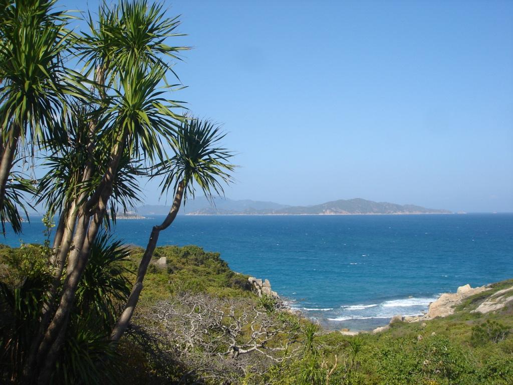 Hìnha rnh quê hương biển đảo cây dừa